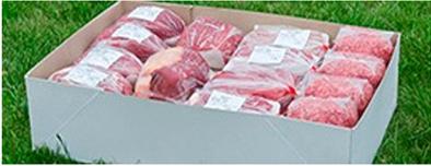 vlees van gijs