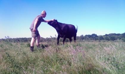 vlees-woeste-grond